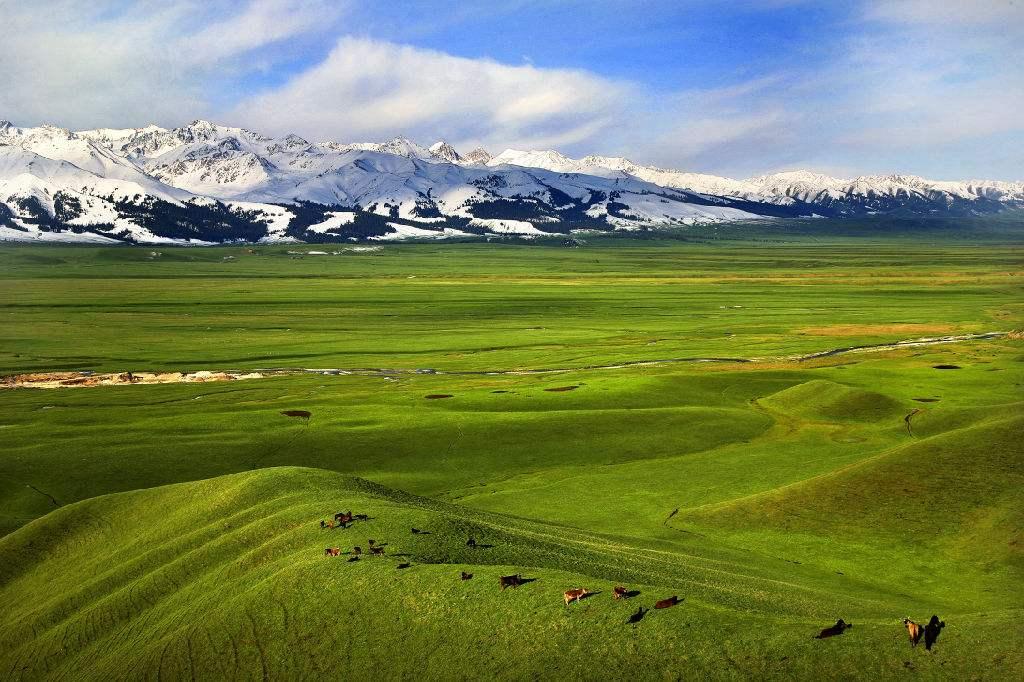 新疆旅游必体验