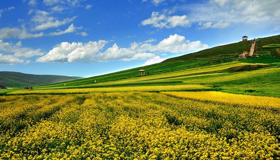 青海旅游必体验