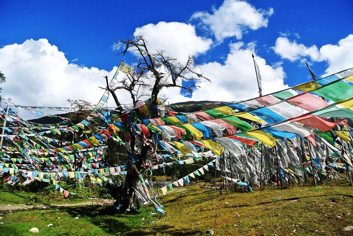 西藏旅游高反