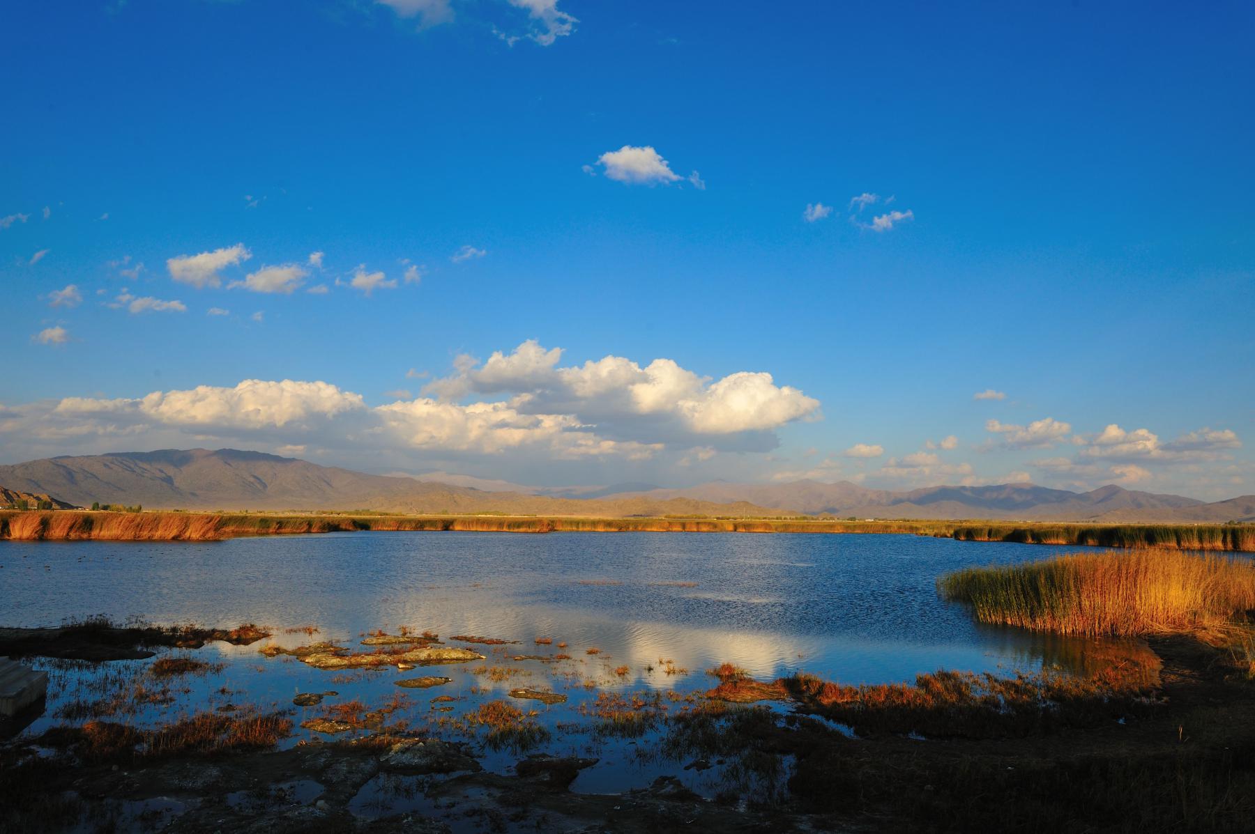 北疆可可苏里湖旅游