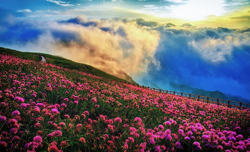"""6米,位于毕节市赫章县珠市彝族乡,为贵州最高峰,素有""""贵州屋脊""""之称."""