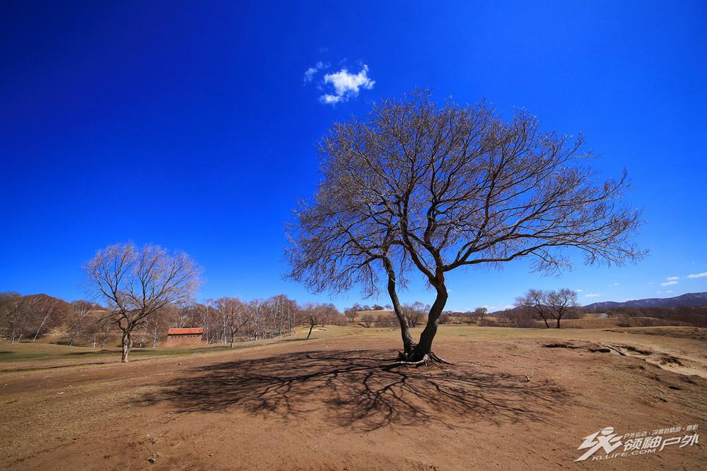 秋季坝上草原