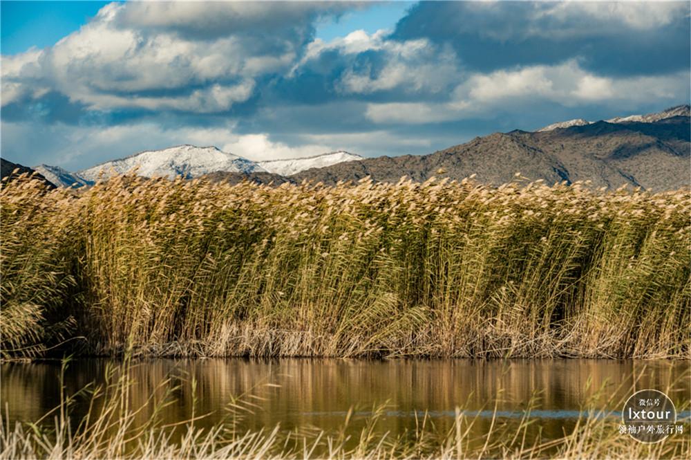 北疆可可苏里湖