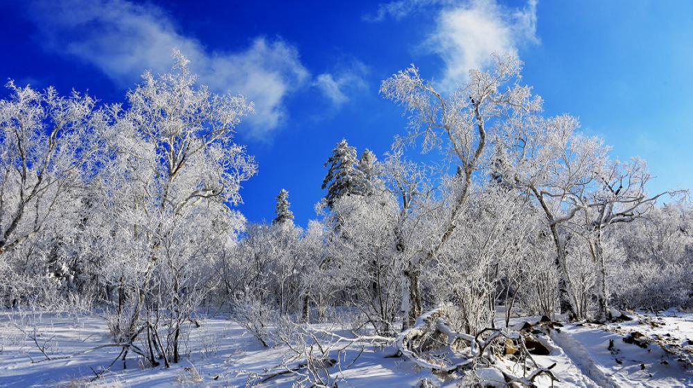 雪鄉旅游景點