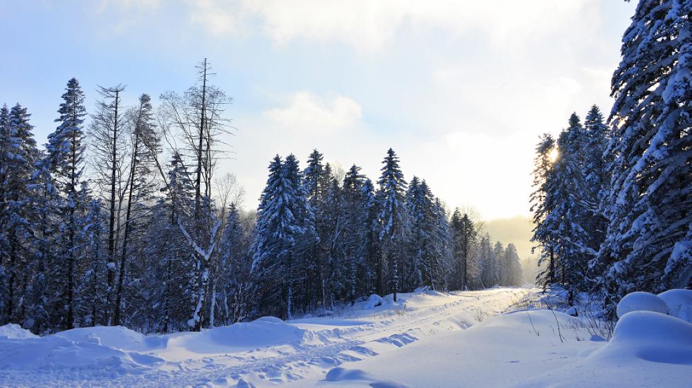 雪乡旅游季节