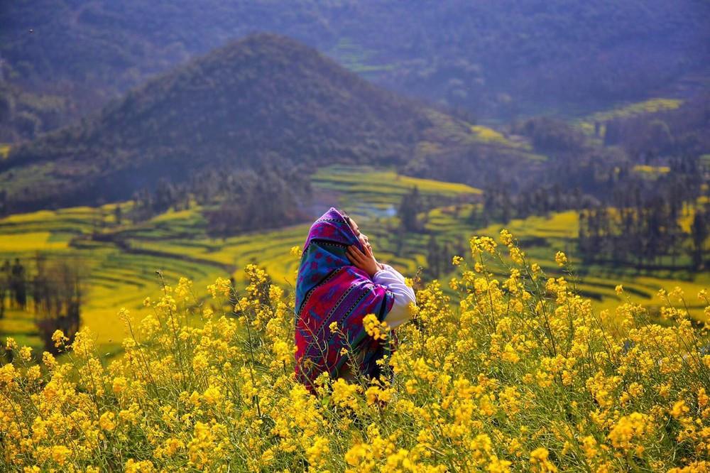 羅平旅游去哪些景點游玩?金雞峰油菜花|九龍瀑布|多依河