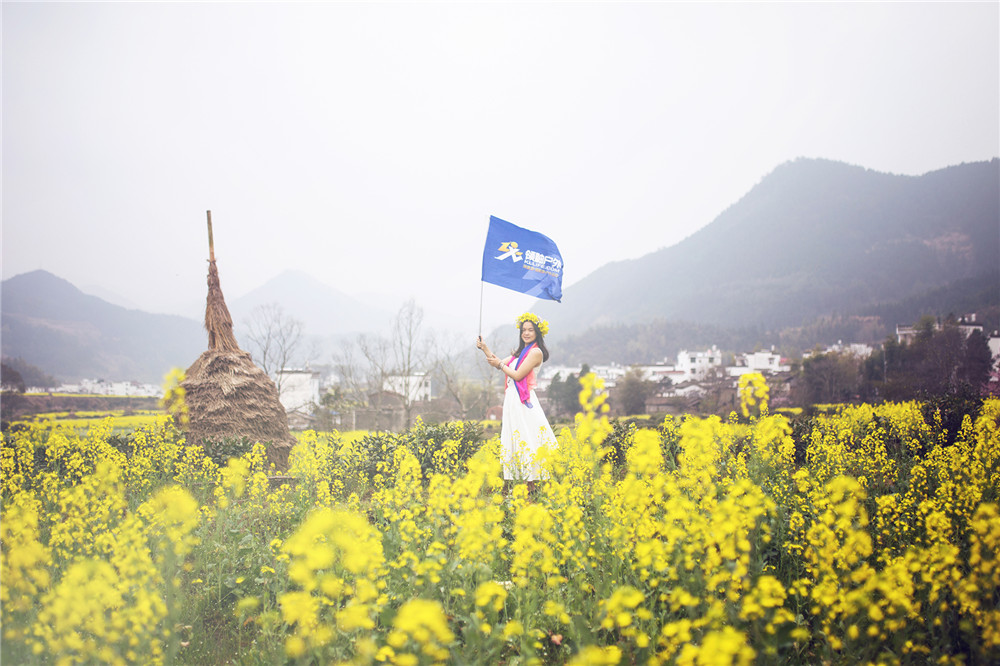 中国油菜花旅游