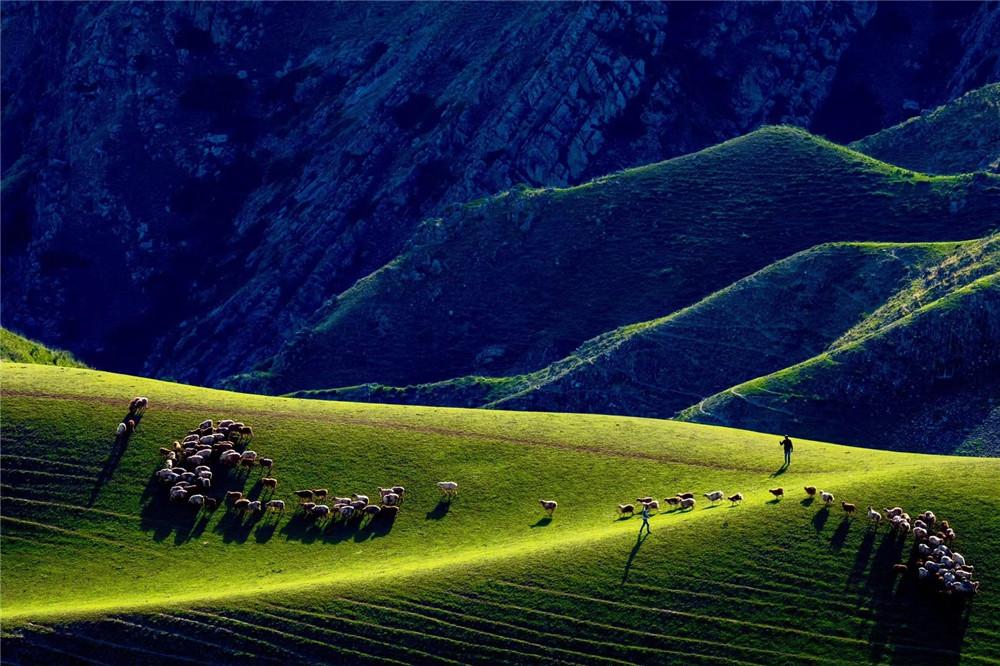喀拉峻草原在哪里