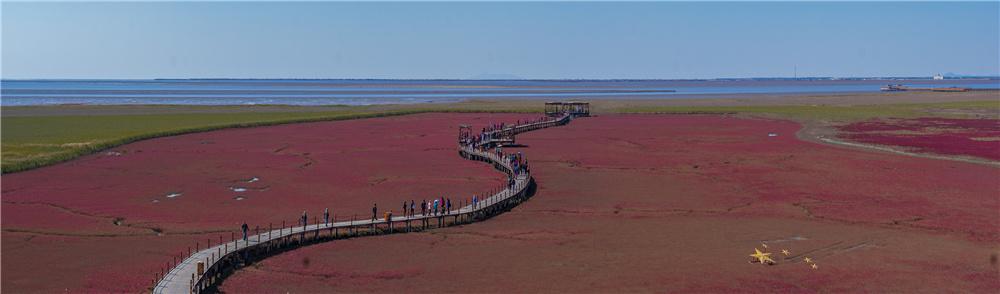 盘锦红海滩旅游