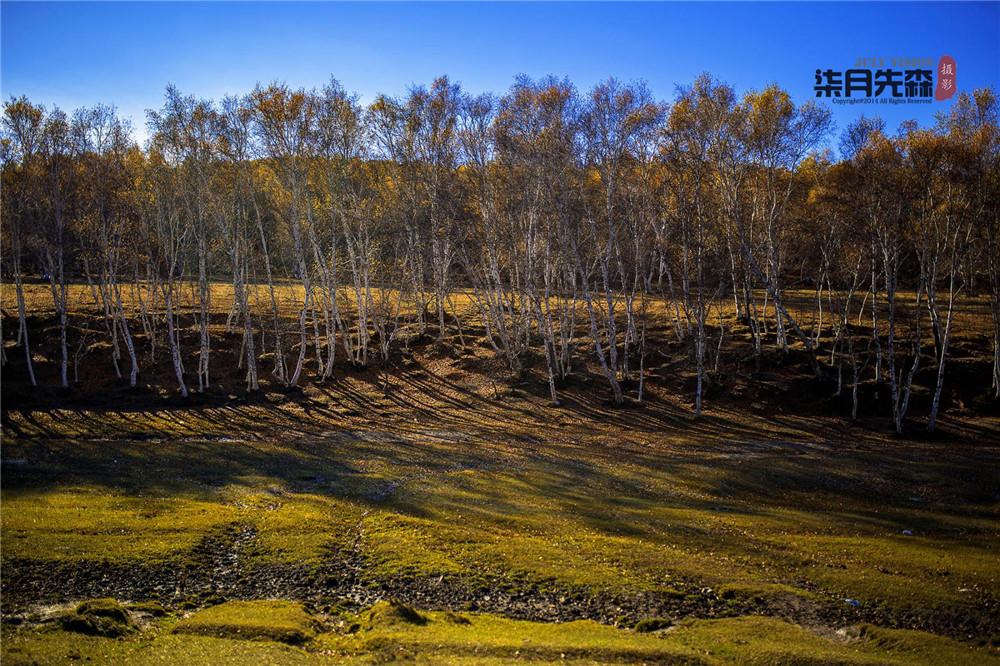 木兰围场坝上草原