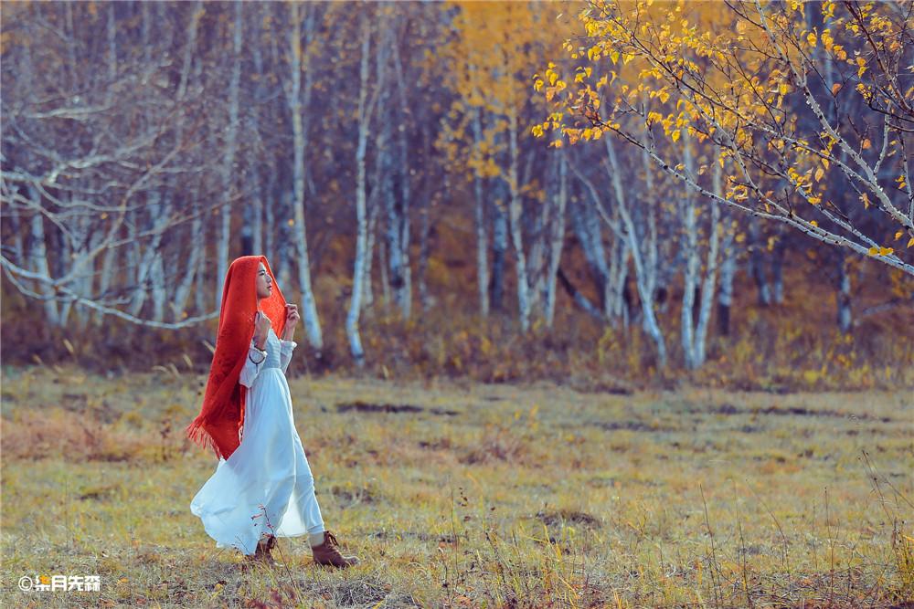 坝上草原乌兰布统旅游