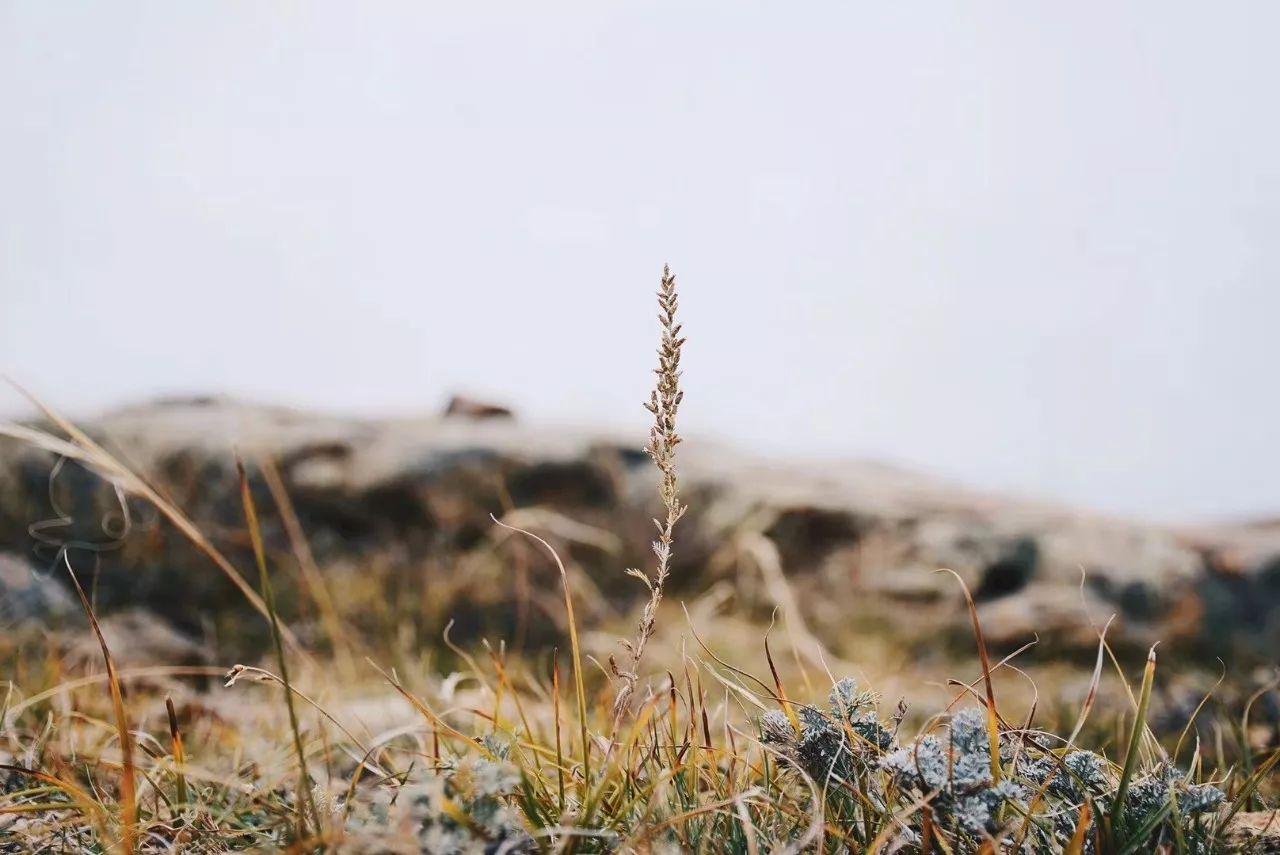 贾登峪旅游