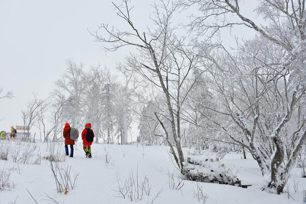 雪乡旅游攻略