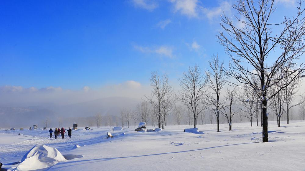 国内冬季旅游前去雪乡怎样样?雪乡气候若何呢?