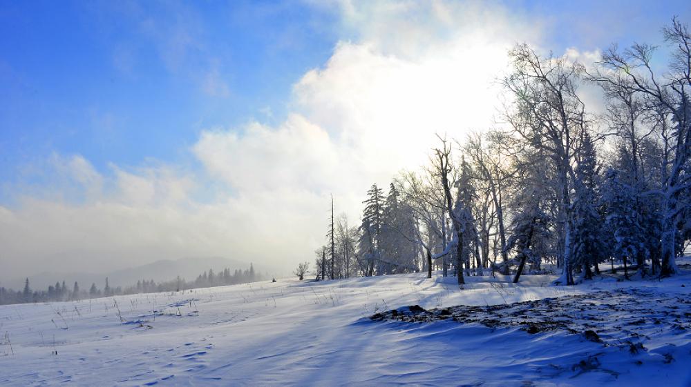 冬季雪乡怎样游玩?雪乡旅游纵贯车怎样运行?
