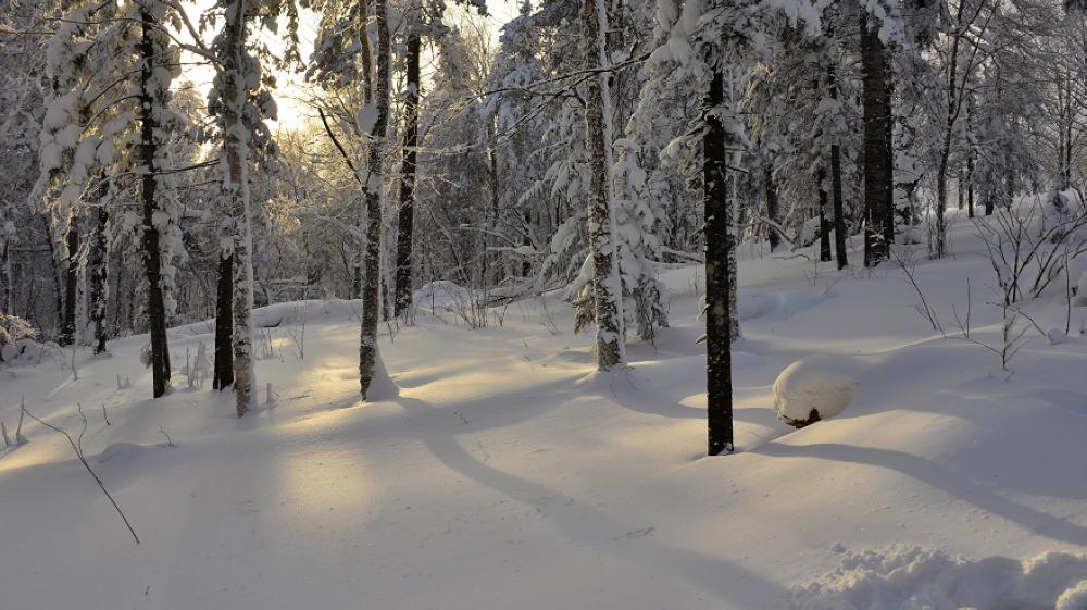 雪谷穿越雪乡线路攻略,冬季雪谷交通体例是甚么?